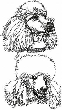 Poodle pattern. Use the printable outline for crafts