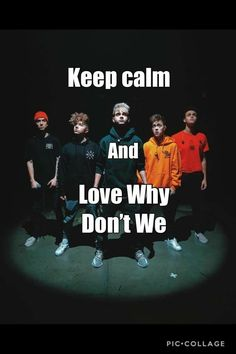 You mean: Don't keep calm and love Wdw? Keep Calm And Love, I Fall In Love, Fangirl, Why Dont We Imagines, I Need U, Why Dont We Band, Band Wallpapers, Keep Calm Quotes, Zach Herron