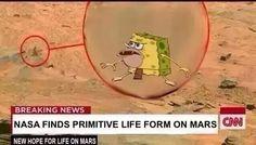 Prehistoric Spongebob Meme shitpost - Album on Imgur