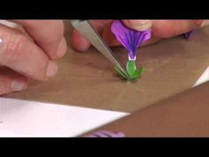 How to Use Sizzix Thinlits Hardy Geranium Flower Die