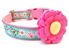 Owl Dog Collar Pink and Blue Owl Dog Collar by Dogologie on Etsy, $18.00