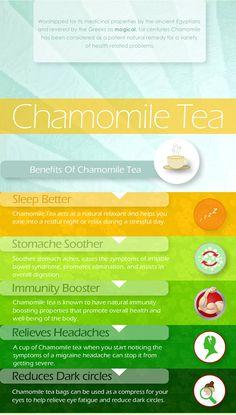 Chamomile Tea Benefits ; drink up!  #tealover #goodforyou