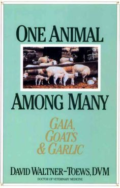 One Animal Among Many: Gaia, Goats and Garlic