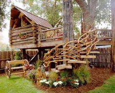 Cool Tree House!