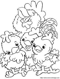 picture three-beautiful-chicks.jpg