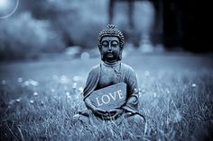 """""""Radiate boundless love towards the entire world —above,below,and across —unhindered, without ill will, without enmity."""" -Buddha  #love #buddha  #quotes #powerthoughtsmeditationclub"""