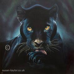 Painting of a black jaguar by UK based artist Susan Taylor, oil on canvas 1 meter square, black panther, big cat, wildlife and pet portrait artist. Black Panther Tattoo, Black Panther Art, Dark Panther, Tattoo Black, Panther Cat, Wild Panther, Jaguar Tattoo, Black Panthers, Black Jaguar