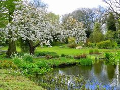 The Galloping Gardener: Spring is in the air - great British gardens open their doors around the country this weekend