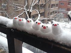 snow bird 6 #bonhommedeneige snow bird 6