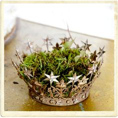 moss filled crown