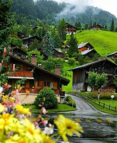 """Sharon Chen on """"map of europe Les Diablerets - Switzerland"""" Beautiful Places To Travel, Wonderful Places, Beautiful World, Places Around The World, The Places Youll Go, Places To Go, Nature Photography, Travel Photography, Beau Site"""