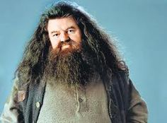 Day 5: favorite male character  He brought Harry into the wizarding world and started it all.