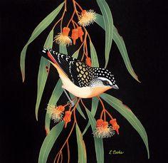 'Australian Spotted Pardalote On Eucalyptus Blossom' by Lyn Cooke  www.lyncooke.com www.artpublishing.com.au
