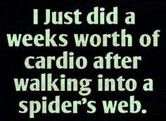 A weeks worth of cardio