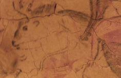 Altamira cave - Black bison is drawn with coal - Santillana del mar - Spain