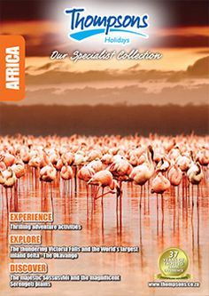 Brochures, Africa, Holidays, Explore, Travel, Collection, Holidays Events, Viajes, Holiday