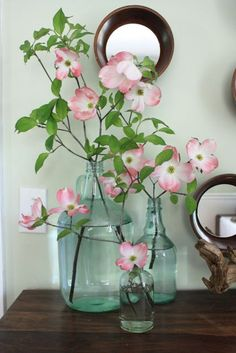 Forcing branches to bloom indoors.  http://www.mosseclectic.com/2011/03/how-to-force-branches.html