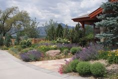 Drought-Tolerant Landscaping | Cool, California Landscape Design | Sacramento Landscape and Design