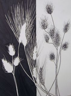 Positive Negative Space Study - RISD Pre-CollegeMaterials: graphite, fine line marker, inkStudents visit the Nature Lab, or any outdoor natural area to observe a collection of plants. these plants are gathered together to create a composition and then…