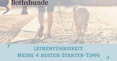 Dein Hund zieht an der Leine und du weißt nicht wie du das ändern kannst? Hier sind 4 meiner besten Tipps wie du das gehen an lockerer Leine üben kannst.