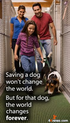 Saving a dog changes his world forever. #4Knines #DogQuotes #DogRescue #PuppyRescue