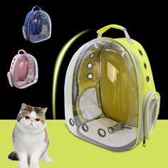 Cat BagMochila de Gatos
