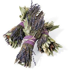 #photoadayMay - May 8: a smell I adore: lavender!