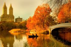Central Park in the autumn. New York City. I travelled to New York City June I would love to return. I would love to explore Central Park in the autumn. Central Park, New York Central, Nyc Fall, Autumn In New York, Autumn Fall, Autumn Forest, Oh The Places You'll Go, Places To Travel, Wonders Of The World