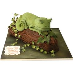Chamelion Cake More