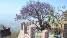 TGI Star Holidays - Yercaud: Holiday Home Yercaud