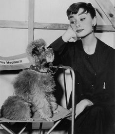 Miss Audrey Hepburn and her poodles in the 1954 film, Sabrina.