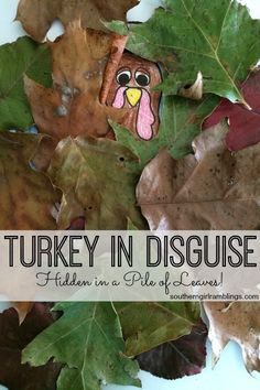 A cute Turkey in Disguise idea that makes an easy Thanksgiving craft for kids!