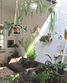 30+ Indoor Jungle Inspirations - All the rooms will be decorated according to the chosen topic of the party. Living rooms can be wholly transformed with the appropriate mural. Most ro... by Joey Deco Jungle, Jungle Room, Jungle Theme, Room With Plants, House Plants, Home Interior, Interior And Exterior, Jungle Decorations, Style Deco