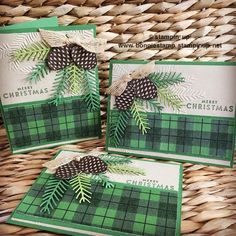 Can you tell I'm in love with the new Pretty Pines thinlits....(#143496) pairing it with the new pine bough embossing folder (#141831) and the warmth & cheer DSP pack (#141991). The holiday catalog runs through December - don't miss out on several must have items! Order 24/7 at http://www.bonniestamp.stampinup.net