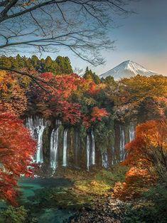 "letslookingattheworldstuff: "" Shiraito Falls, Japan Shiraito Falls is a waterfall in Fujinomiya, Shizuoka Prefecture, near Mount Fuji, Japan. It is part of Fuji-Hakone-Izu National Park and has been..."