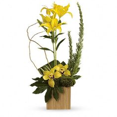 Make a tropical style statement with gorgeous yellow lilies and orchids artistically arranged in a stunning cube vase made of real bamboo. Think how thrilled they'll be when this bold, beautiful gift arrives at the door. Order Flowers, All Flowers, Exotic Flowers, Tropical Flowers, White Flowers, Beautiful Flowers, Flowers Garden, Tropical Style, Tropical Flower Arrangements