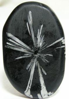 Chrysanthemum Stone Cabochon Palm Stone by FenderMinerals on Etsy