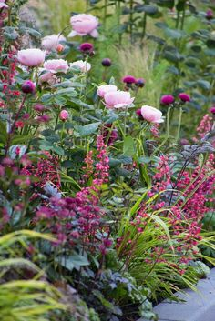 40 inspirations pour un jardin anglais Pink roses purple thistles dark-leaved Actea and Heuchera with variegated grasses. The post 40 inspirations pour un jardin anglais appeared first on Garten. Heuchera, Garden Cottage, Different Flowers, Colorful Garden, Tropical Garden, Plantation, Dream Garden, Diy Garden, Shade Garden