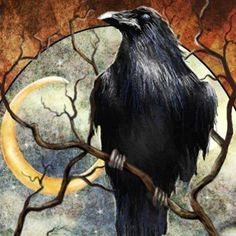 I don't usually like these raven, crow things, too creepy. but this one is cool creepy. it looks strong, but not evil.