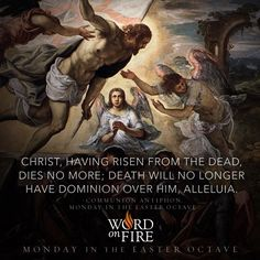 """EASTER MONDAY """"Christ, having risen from the dead, dies no more; death will no longer have dominion over him, alleluia."""" - Communion Antiphon, Monday in the Easter Octave Holy Thursday, Holy Saturday, Christ Is Risen, Christ The King, Epiphany Of The Lord, Thomas Aquinas Quotes, Catholic Easter, Bishop Barron, Divine Mercy Sunday"""