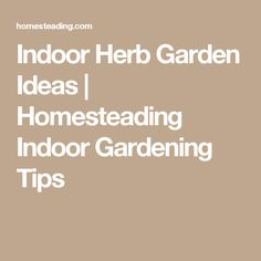 Indoor Herb Garden Ideas | Homesteading Indoor Gardening Tips