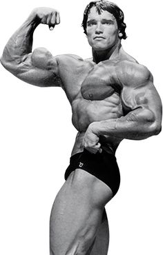 Arnold schwarzenegger immortalized in bodybuilding figurines arnold schwarzeneggers blueprint to cut training malvernweather Gallery