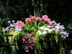 love the colors and shapes