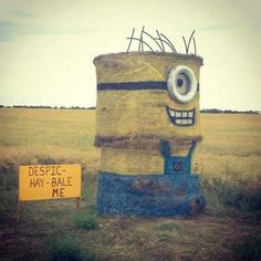 """""""Despic-Hay-Bale-Me"""" -- Commenter: """"I straw what you did there!"""" -- Click through for more funny hay bale Minions and more. Minions Love, Minions Despicable Me, My Minion, Minions 2014, Minion Art, Minion Stuff, Funny Images, Funny Photos, Haha"""