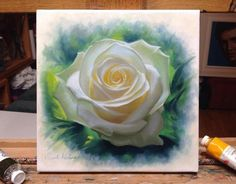 Nature's Gold A small oil painting on canvas of a white rose. Please note that because it needs to dry properly before a light varnish can go on for protection, it will be mid November before this work is ready to ship.    Size 20x20cm   Price 250 Euro unframed 350 Euro framed