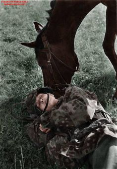 "Soldier of the 8th SS Cavalry Division ""Florian Geyer"" and a horse. True friendship."