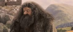 """Proof Hagrid Was The Greatest Father Figure In The """"Harry Potter"""" Series"""