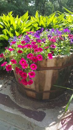 Whiskey Barrel-great color mix but love petunias cascading. I love this aspect. Good moment in time for my container Container Flowers, Flower Planters, Container Plants, Container Gardening, Flower Pots, Outdoor Flowers, Outdoor Planters, Outdoor Landscaping, Garden Yard Ideas