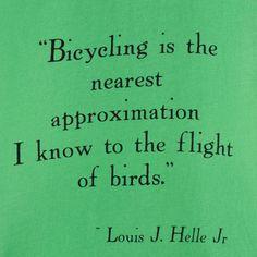 Ir en bici es lo mas cerca que puedes estar del vuelo de los pájaros