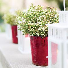 Make an entrance...A row of white lanterns and vintage red sap buckets adds spark to the entryway. Protect a non-watertight container by dropping in a small plastic container (an empty yogurt tub works well).    What we used      Geraldton waxflower  Style tip  To maximize the life of your bouquets, clip 1 inch off stems before putting them in water